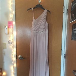 Adrianna Papell Blush Floor Length Gown